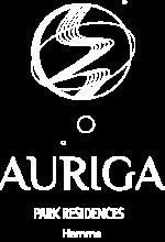 auriga-web-wit-340